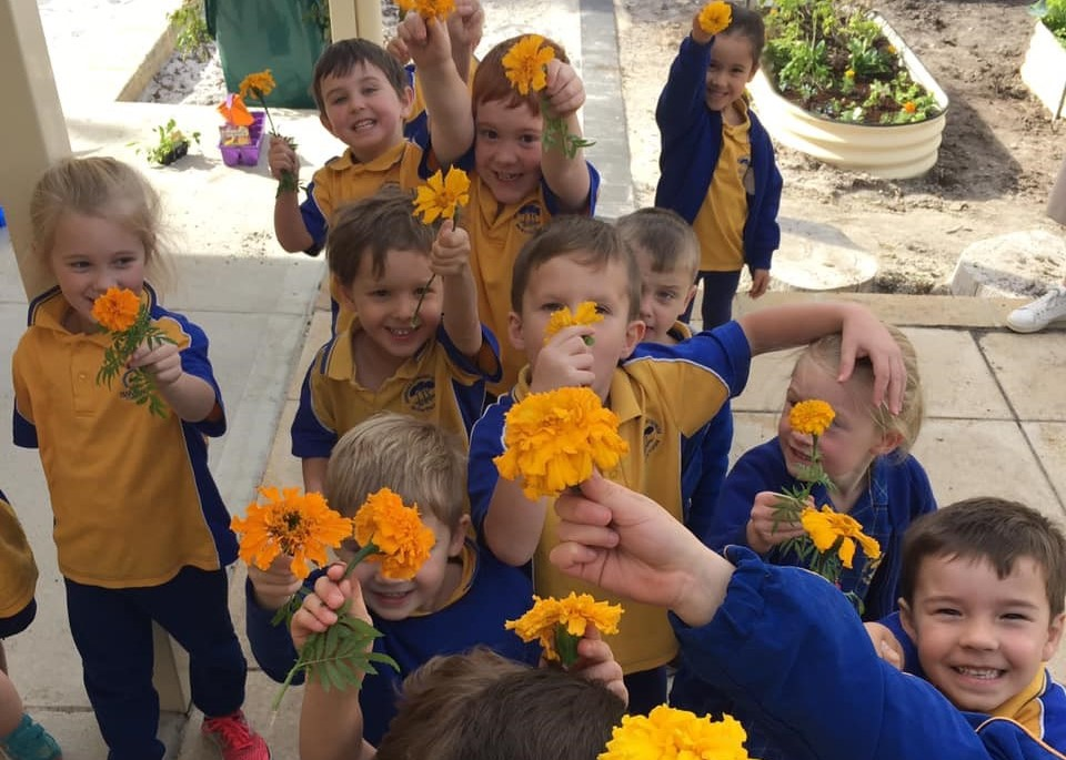 Our School Our staff - Marigold children